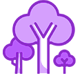 Fruit Trees Icon